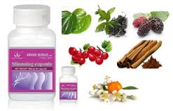 Obat Untuk Mengurangi Lemak Di Perut
